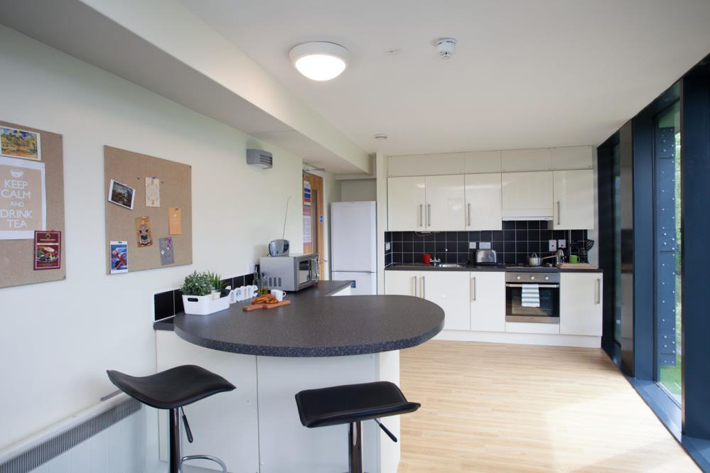 Shared Kitchen & Dining Area